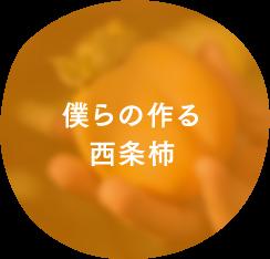 僕らの作る西条柿