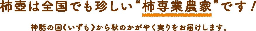 """柿壺は全国でも珍しい""""柿専業農家""""です!"""