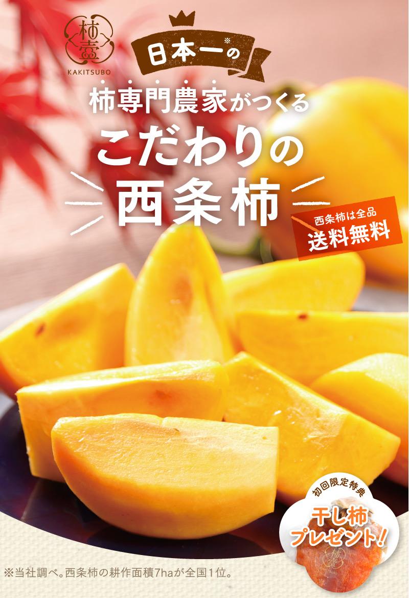 日本一の柿専門農家がつくるこだわりの西条柿。西条柿は全品送料無料。初回限定特典で干し柿プレゼント!2020年11月より発送開始予定。