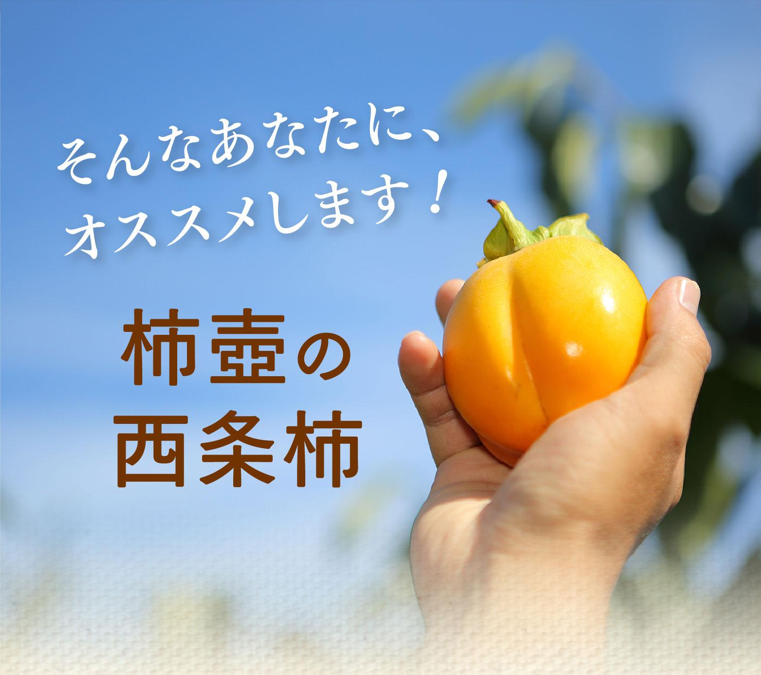 そんなあなたに、オススメします!柿壺の西条柿