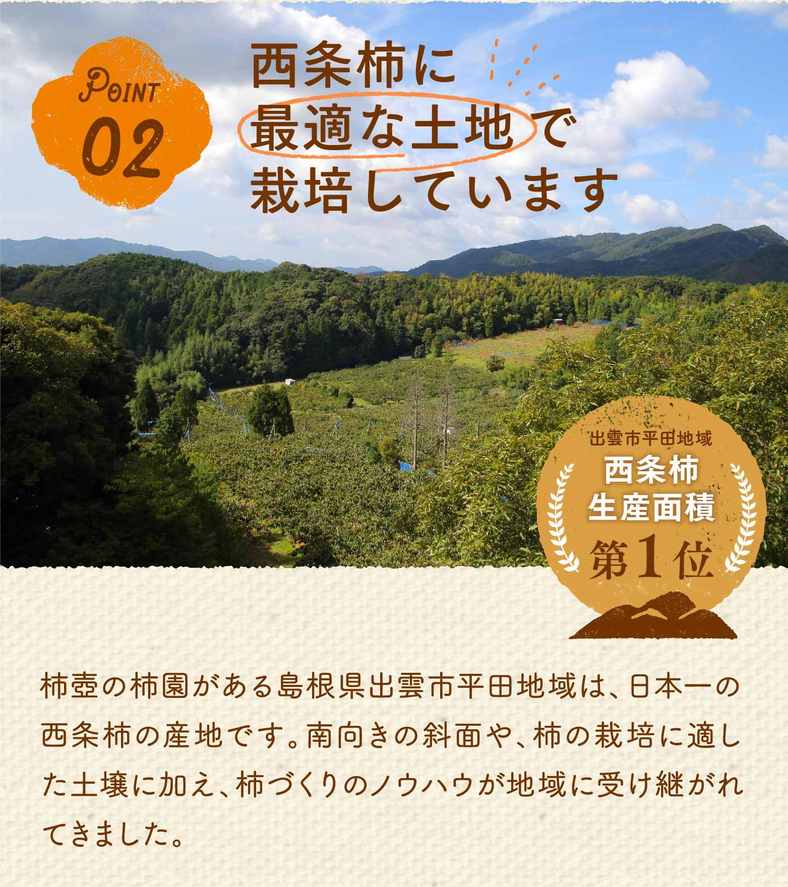 ポイント2。西条柿に最適な土地で栽培しています。出雲市平田地域は、西条柿の生産面積が日本1位です。柿壺の柿園がある島根県出雲市平田地域は、日本一の西条柿の産地です。南向きの斜面や、柿の栽培に適した土壌に加え、柿づくりのノウハウが地域に受け継がれてきました。