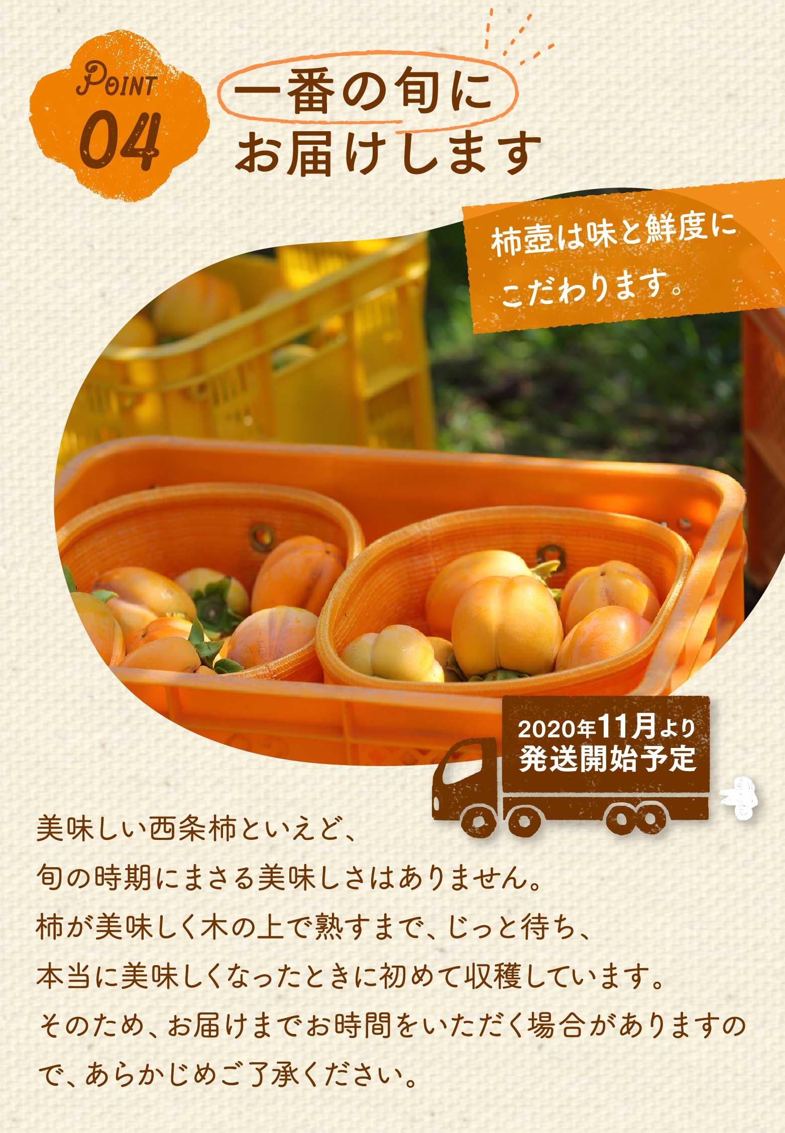 ポイント4。一番の旬にお届けします。柿壺は味と鮮度にこだわります。2020年11月より発送開始予定です。美味しい西条柿といえど、旬の時期にまさる美味しさはありません。柿が美味しく木の上で熟すまで、じっと待ち、本当に美味しくなったときに初めて収穫しています。そのため、お届けまでお時間をいただく場合がありますので、あらかじめご了承ください。